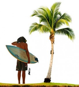 surfer silicon palms, lifestyle by design