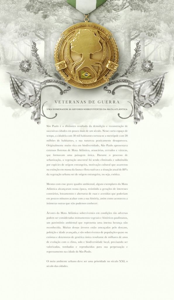 Veteranas de Guerra